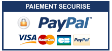 LOGO- Paypal